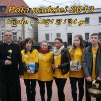 pola2013_Pola_nadzieii_2013