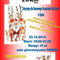 zumba-2014_Plakat
