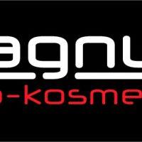 magnum_auto-kosmetyka_logo